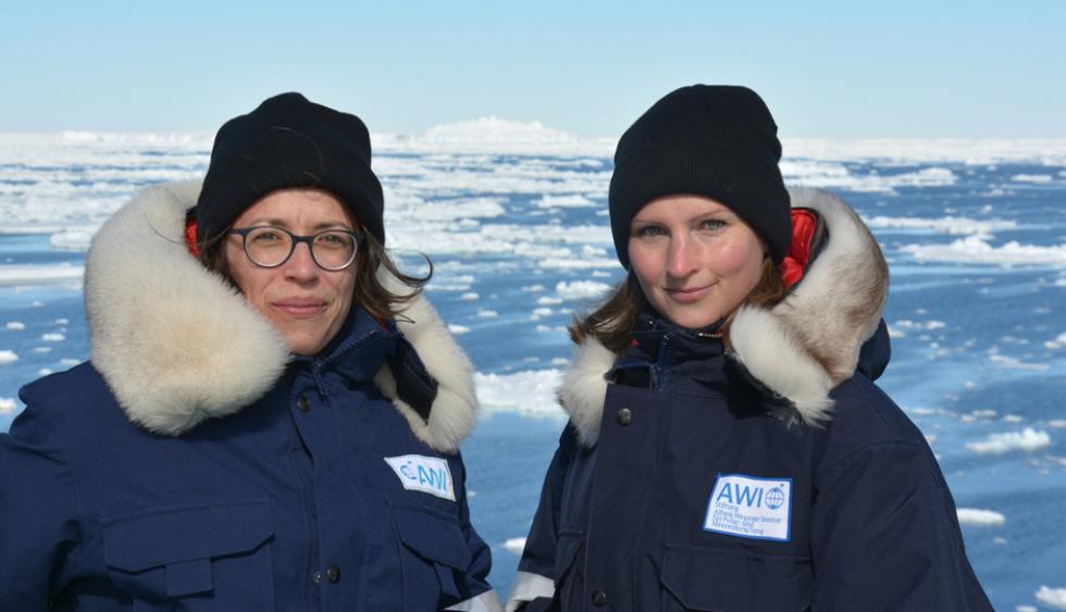 Frauen suchen männer antartica